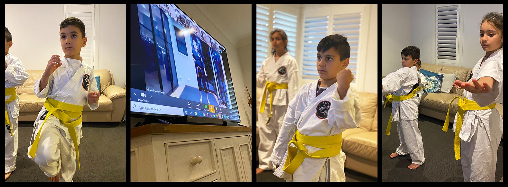 Shirudo Ultimate Martial Arts Virtual Class